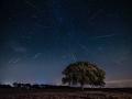 Lluvia estrellas Perseidas_0511-2